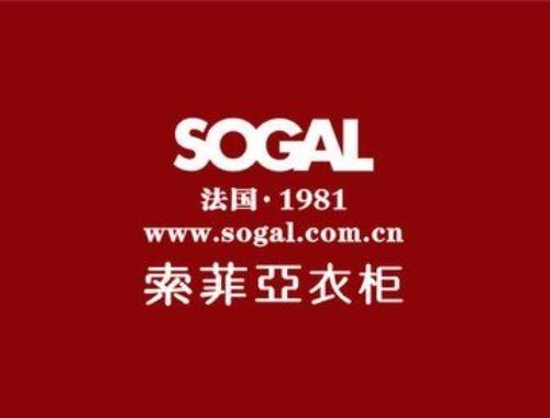 Wang Bing, Executive President of Sogal---Secret of Sogal's Digital Road