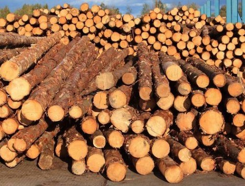 Timber shortage may become a long-term trend in the global timber market!