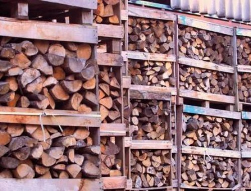 Ukraine intends to allow log exports by the end of 2021